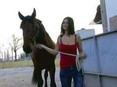 Von einem pferd gefickt